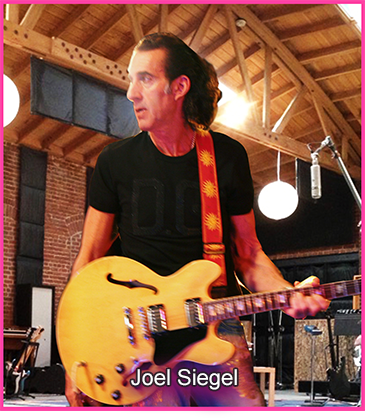 Announcing Joel Siegel's Latest CD Pink Hotel